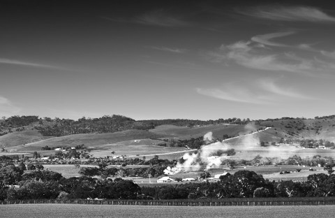 Barossa Ranges Panorama