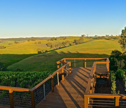 Steingarten viewing platform barossa lookout